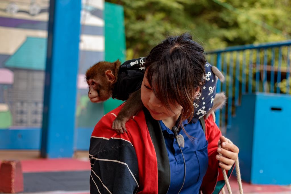 動物園 ツイッター 志村